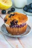 Czarnej jagody i cytryny muffins Obraz Stock