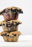 czarnej jagody jumbo muffins Obraz Stock