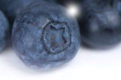 czarnej jagody macro Zdjęcia Royalty Free