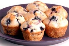 czarnej jagody muffins półkowe purpury kilka Obraz Royalty Free