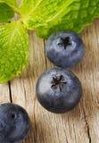 Czarnej jagody owoc Obrazy Stock