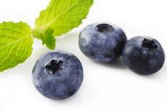 Czarnej jagody owoc Fotografia Stock