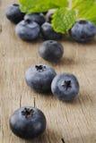 Czarnej jagody owoc Zdjęcie Royalty Free