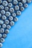 Czarnej jagody owocowa witamina świeża Zdjęcie Stock