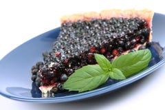 czarnej jagody tarta Fotografia Stock