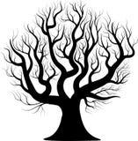Czarnej sylwetki nagi drzewo Obraz Stock