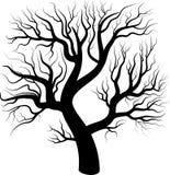 Czarnej sylwetki nagi drzewo Zdjęcie Royalty Free