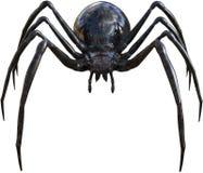 Czarnej wdowy pająka insekt odizolowywający royalty ilustracja