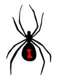 Czarnej wdowy pająka symbol obraz royalty free