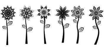 Czarni Biali kwiaty Fotografia Stock