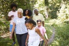 Czarni dziewczyna spacery z babcią i rodziną w lesie, zakończenie w górę obraz royalty free