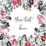 Czarni i czerwoni liści druki lokalizują wokoło przestrzeni dla inskrypci Obraz Royalty Free
