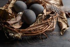 Czarni jajka w gniazdeczku suche gałąź na czarnej desce Wielkanoc styl fotografia stock