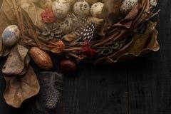 Czarni jajka w gniazdeczku suche gałąź na czarnej desce Wielkanoc styl zdjęcie stock