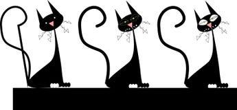 Czarni koty Zdjęcia Stock