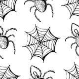 Czarni pająki i sieci Zdjęcia Stock