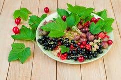 Czarni rodzynki, agresty i inne jagody na talerzu na w, Fotografia Royalty Free