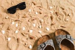 Czarni sunglass i, seashell na piasku z miejscem dla twój teksta Odgórny widok Zdjęcie Royalty Free