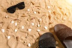 Czarni sunglass i, seashell na piasku z miejscem dla twój teksta Odgórny widok Zdjęcia Royalty Free