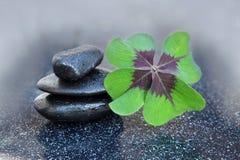 Czarni zdrojów kamienie i cztery liści koniczyna Fotografia Royalty Free