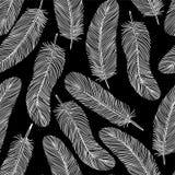 Czarno biały Piórkowy bezszwowy tło Zdjęcia Royalty Free