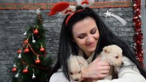 Czarnogłowi dziewczyny cuddle dwa szczeniaki w nowego roku ` s wigilii zbiory