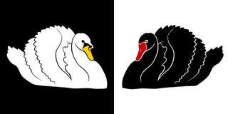 Czarny łabędź i Biała Łabędzia ilustracja Obraz Royalty Free