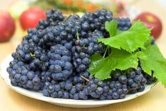 czarny świeży winogrono Obraz Royalty Free
