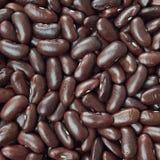 Czarny żółw fasoli tekstury wzór lub tło surowe jedzenie Obrazy Stock