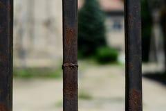 Czarny żelaza ogrodzenia zakończenie up Obrazy Stock