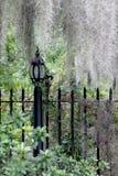 Czarny żelazny lamppost z płaczącymi wierzbami i Hiszpańskim mech Fotografia Stock
