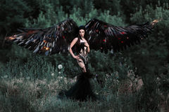 Czarny anioł Obraz Royalty Free