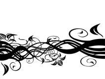czarny backgou kwiecisty white Zdjęcia Royalty Free