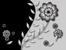 czarny białe tło Fotografia Royalty Free