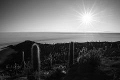 Czarny & biały, słońce gwiazda nad Uyuni soli mieszkaniem, Boliwia Obraz Stock