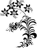 czarny białe kwiaty Obrazy Royalty Free