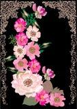 czarny brier dekoraci kwiat royalty ilustracja