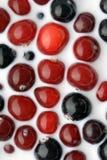 czarny cranberry rodzynku mleko Zdjęcia Stock