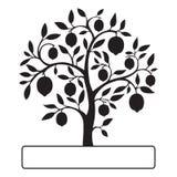 Czarny cytryny drzewo z tekst ramą Zdjęcie Royalty Free