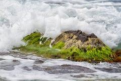 Czarny Denny wybrzeże Rosja Fotografia Royalty Free