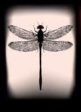 Czarny Dragonfly ilustracja wektor