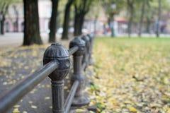 Czarny żelaza ogrodzenie w parku Obrazy Royalty Free