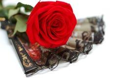 czarny fan flamenco czerwień wzrastał Zdjęcia Royalty Free