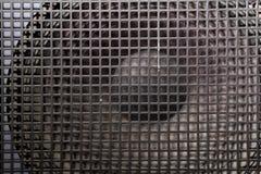 Czarny głośnikowy grill Fotografia Stock