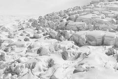 Czarny I Biały, śnieg zakrywał wzrosta wzgórza górę fotografia stock