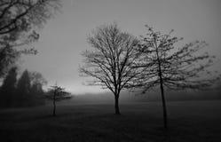 Czarny I Biały świt BRECKSVILLE - OHIO - Cuyahoga Dolinny park narodowy w spadku ranku słońcu - obrazy royalty free