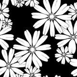Czarny i biały chamomile wektoru bezszwowy wzór ilustracja wektor