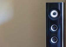 Czarny i biały głośnik Akustyczny rozsądny pojęcie Fotografia Royalty Free