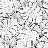 Czarny i biały graficznych tropikalnych liści bezszwowy wzór Zdjęcia Royalty Free