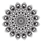 Czarny i biały kółkowy pawi ogon fotografia stock